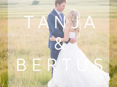 WEDDING | Bertus & Tanja