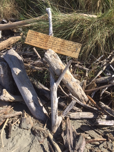 poem written on wood amongst driftwood on the beach