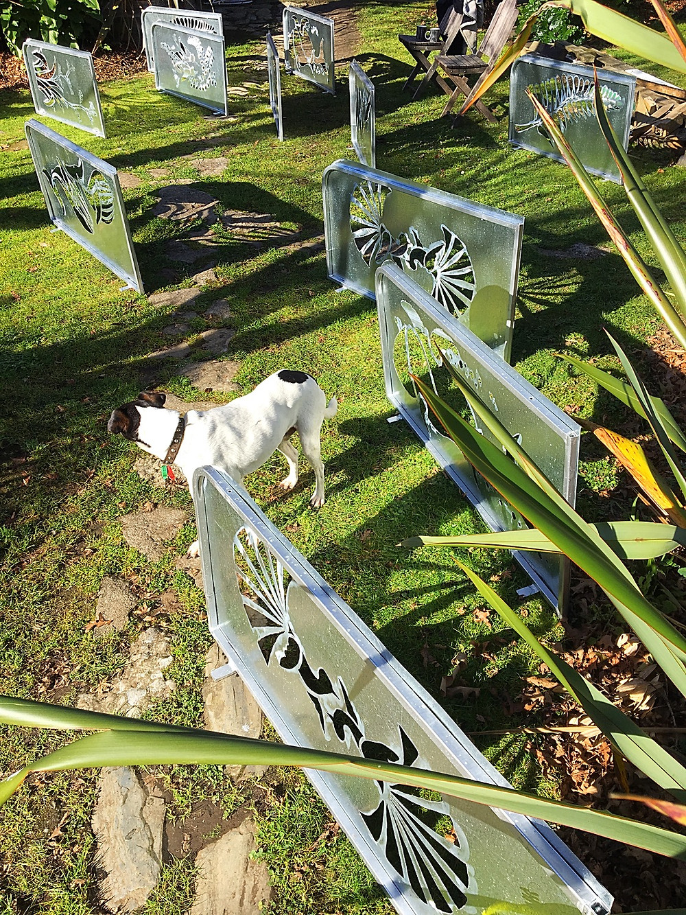 unpainted banners with dog