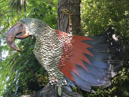 KEA New Zealand Bird of the Year
