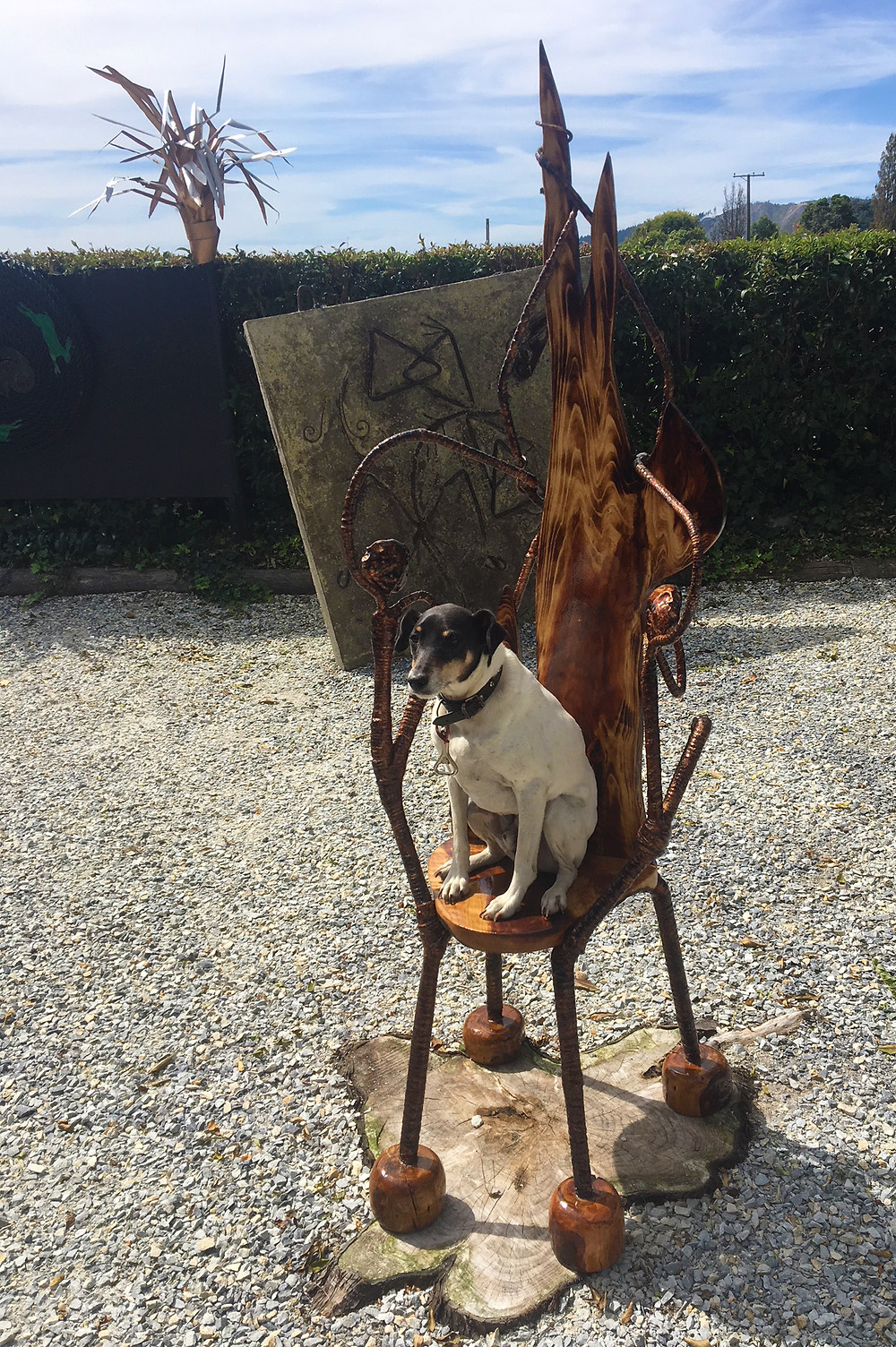 dog sitting on chair made from tree chair sitting on