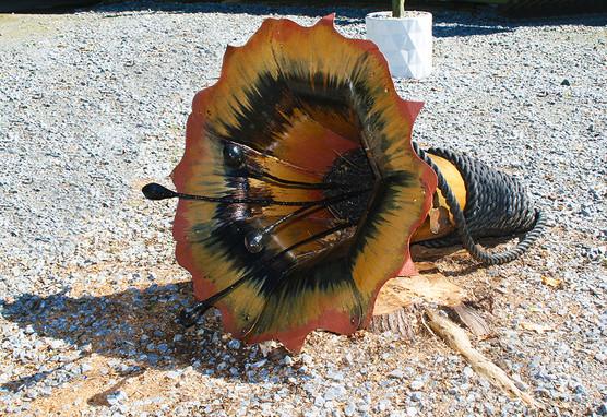 Horn Flower