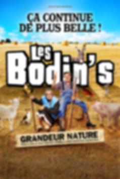 LesBodins-ÇaContinueDePlusBelle-40x60-Bi