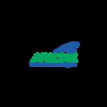 American State, County & Municipal Employees