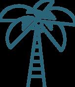 Palmier à ivoire