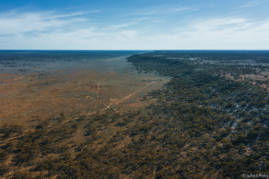 Nullarbor Plain (Australie)