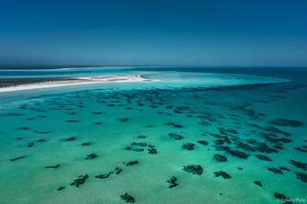 Shell Beach (Australie)