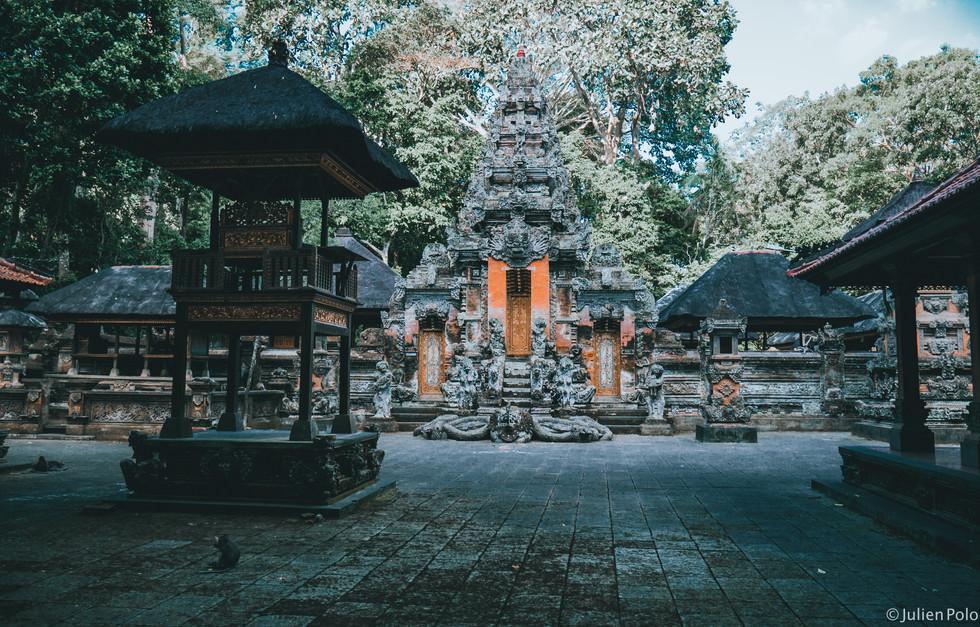 Monkey Forest - Ubud