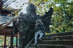 Ubud (Bali)