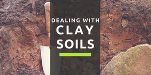 Dealing With Clay Soils