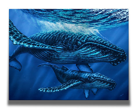 Humpback Whales Gallery-Wrapped Canvas Print