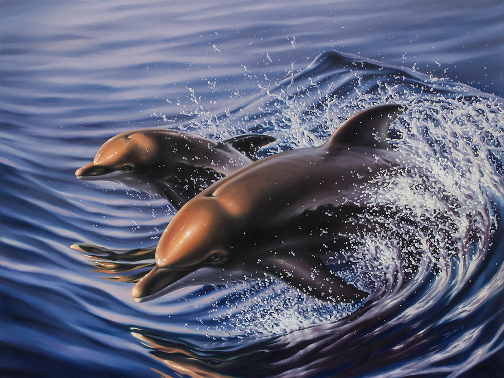 Buckles_Oil_Dolphins_1_Full.jpg