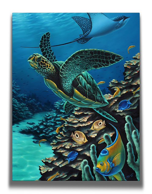Sea Turtle Gallery-Wrapped Canvas Print