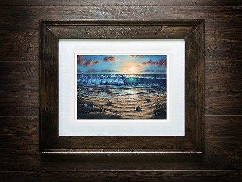 Framed Sea Turtles Hatching Art Print
