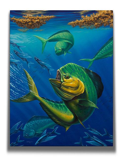 Dorado Gallery-Wrapped Canvas Print