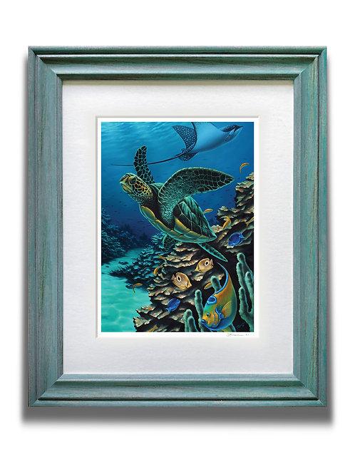 Framed Sea Turtle Art Print