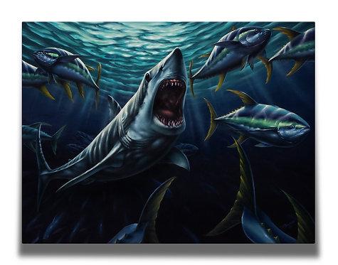 Mako Shark Gallery-Wrapped Canvas Print