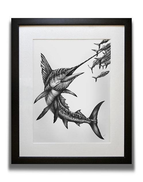 ORIGINAL Sailfish Graphite Drawing