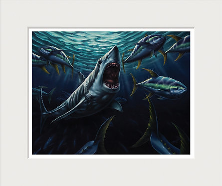 Mako Shark Art Print