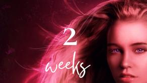 🔹Release Countdown🔹 2 weeks