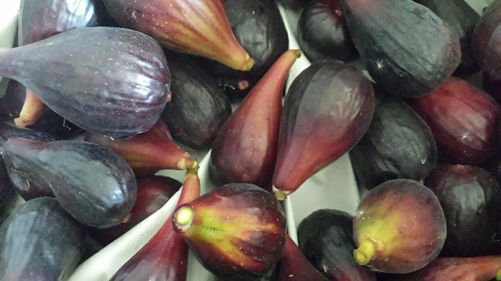 Black Mission Figs by the pound