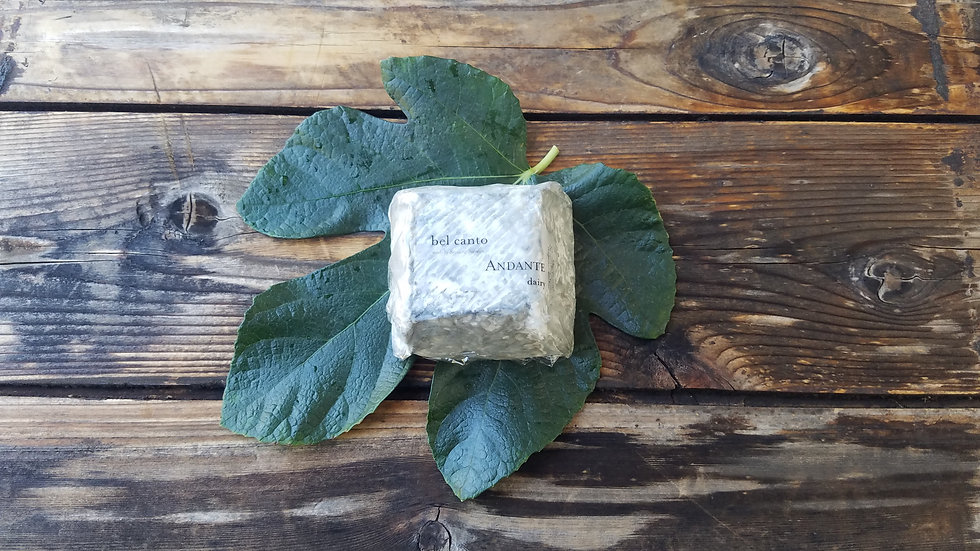 Bel Canto Goat Cheese by Andante Dairy