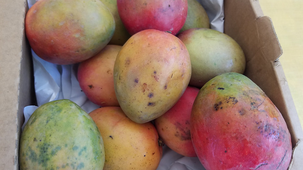 Organic Mangos by the pound