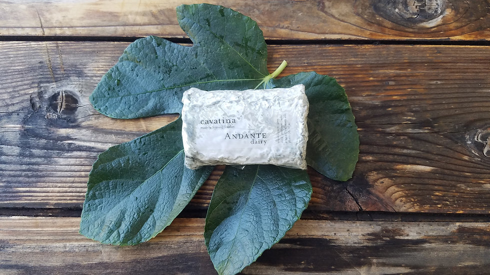 Cavatina Goat Cheese by Andante Dairy