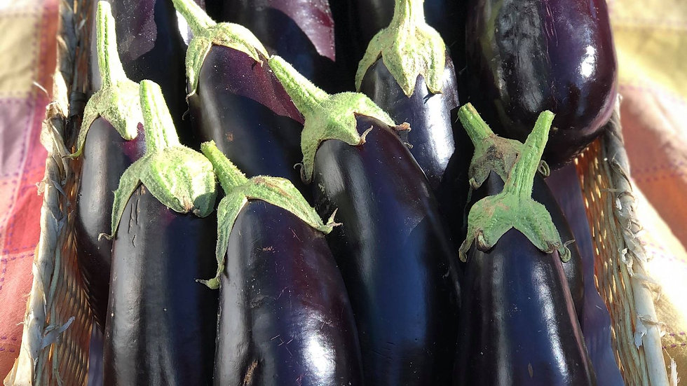 Eggplant by the pound