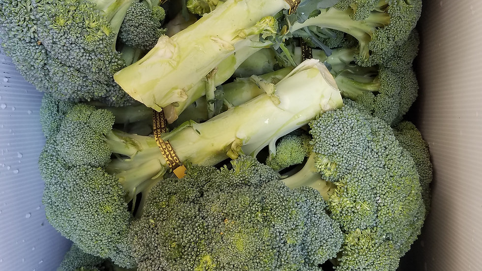 Fresh Brocolli by the pound