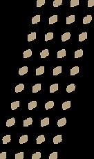 elemento-grafico.png