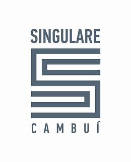 singulare-whitebox.png