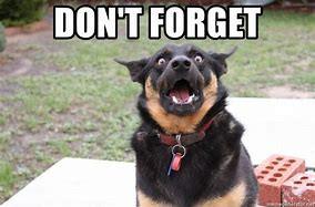 Advisory 204 - Please remember...