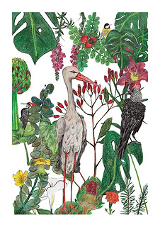 """""""Stork"""" - Most popular print. Polish birds (woodpecker, tomtit, crow, stork), mixed with botanical beauties (zucchini flowers, carnation, monstera, acacia leaves). Each element was drawn separately by color pencils on paper, then scanned, cut out in Photoshop and put together as a collage. 2017"""