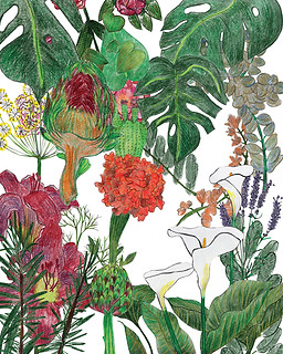 """""""Floristic"""" - Series of the collage botanical posters. 2017"""