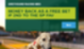 greyhound-racing.png