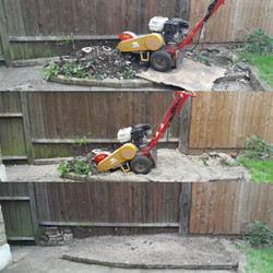 Stump Removal | West London