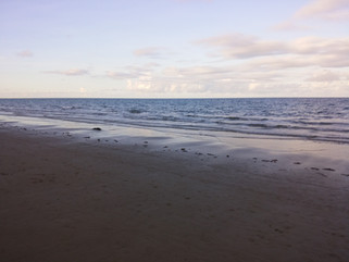 EnviroBlog DotNet - Gallery Beach (10).j