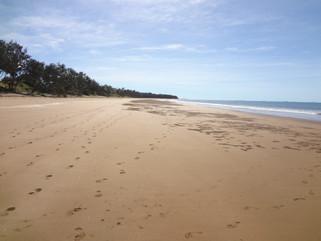 EnviroBlog DotNet - Gallery Beach (28).J