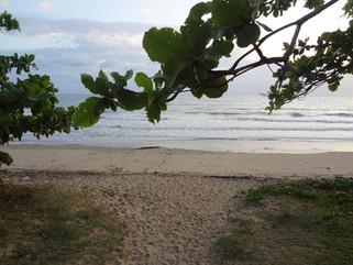 EnviroBlog DotNet - Gallery Beach (19).J