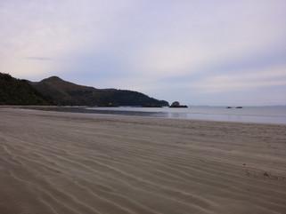 EnviroBlog DotNet - Gallery Beach (4).jp