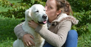 This Decision Could Add Years To Your Pet's Life (Guest Post)