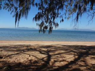 EnviroBlog DotNet - Gallery Beach (25).J