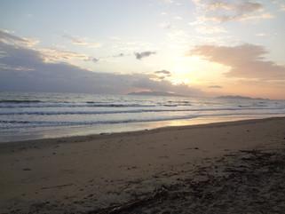 EnviroBlog DotNet - Gallery Beach (20).J
