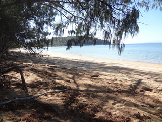 EnviroBlog DotNet - Gallery Beach (24).J