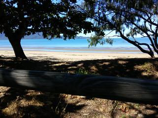 EnviroBlog DotNet - Gallery Beach (13).j