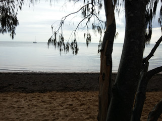 EnviroBlog DotNet - Gallery Beach (14).j