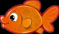 envblog_webcams_fish.png