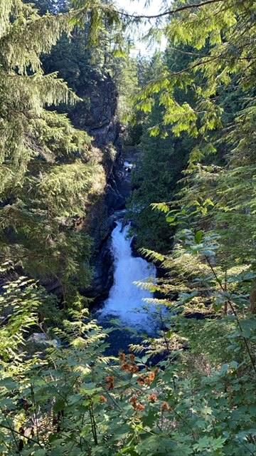 mt loop hwy waterfall.png