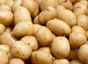 """Pommes de terre """"Ditta"""""""
